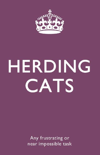 buzzword#7 - Herding cats
